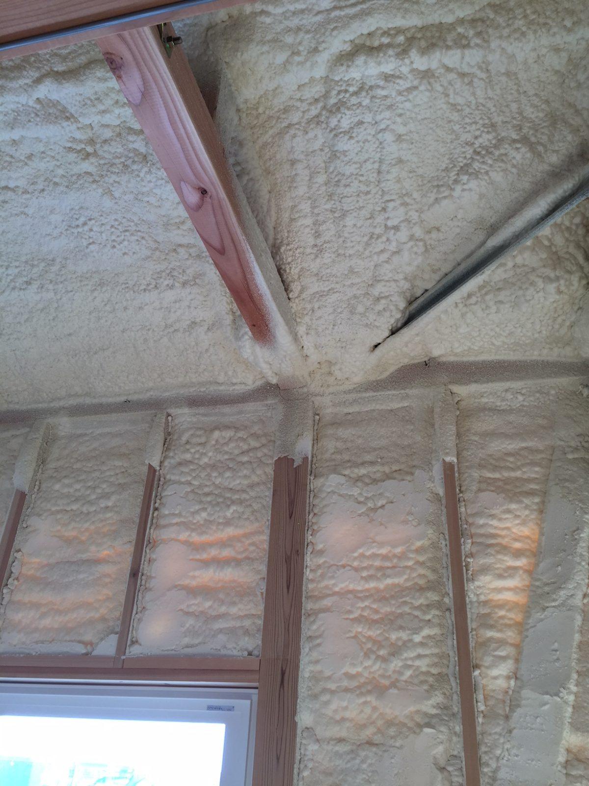壁と屋根裏の様子